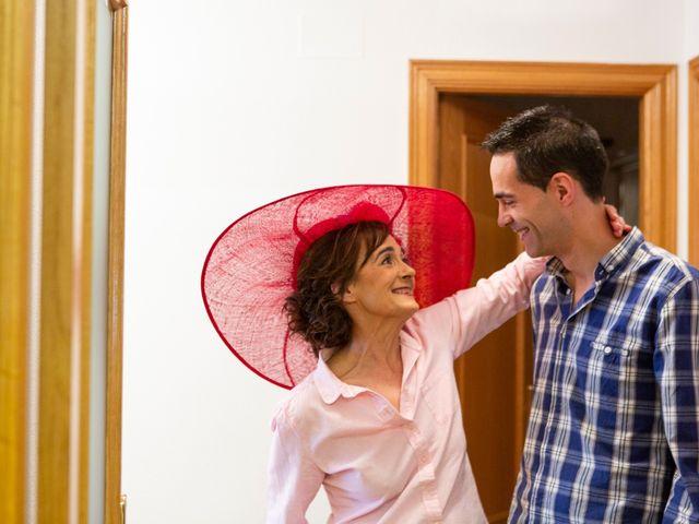 La boda de Luis y Estela en Huermeces, Burgos 2