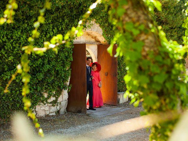 La boda de Luis y Estela en Huermeces, Burgos 12