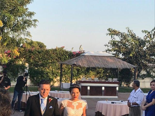 La boda de Dori y Cristian en Sant Vicent Del Raspeig/san Vicente Del, Alicante 1