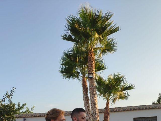 La boda de Dori y Cristian en Sant Vicent Del Raspeig/san Vicente Del, Alicante 6