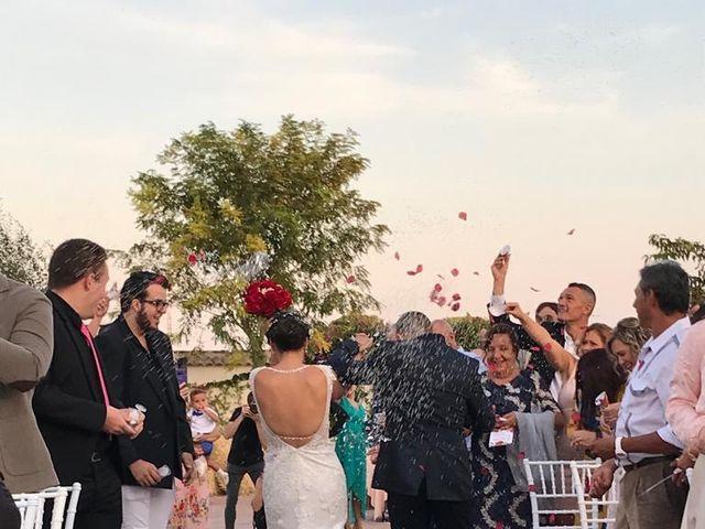 La boda de Dori y Cristian en Sant Vicent Del Raspeig/san Vicente Del, Alicante 9