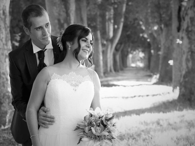 La boda de Javier y Ana en Aranjuez, Madrid 16