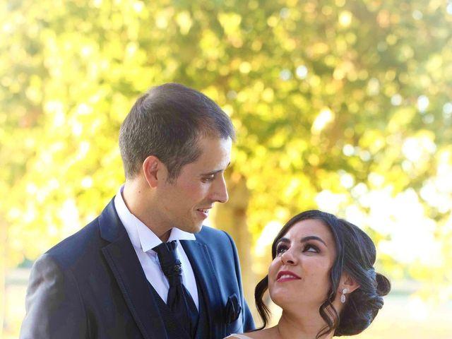 La boda de Javier y Ana en Aranjuez, Madrid 18