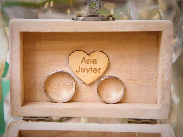 La boda de Javier y Ana en Aranjuez, Madrid 32