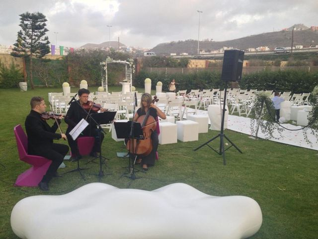 La boda de Mario y Estefanía en Las Palmas De Gran Canaria, Las Palmas 3