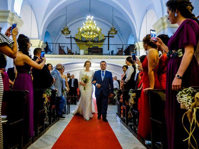 La boda de David y Cristina en Villafranca De Los Barros, Badajoz 14