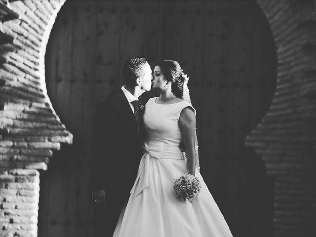 La boda de Victor y Tania en Magan, Toledo 3