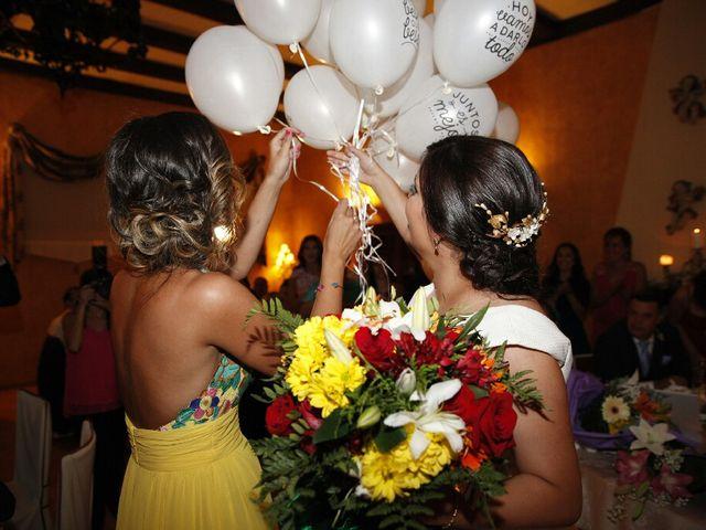 La boda de Victor y Tania en Magan, Toledo 2