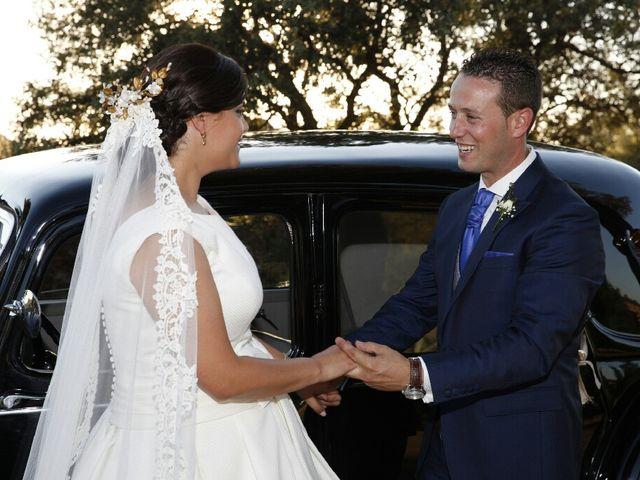 La boda de Victor y Tania en Magan, Toledo 13