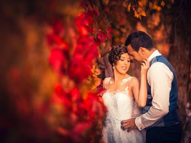 La boda de Ion y Cristina en Ciudad Rodrigo, Salamanca 1