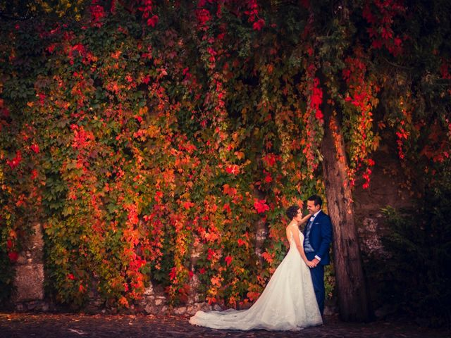 La boda de Ion y Cristina en Ciudad Rodrigo, Salamanca 12