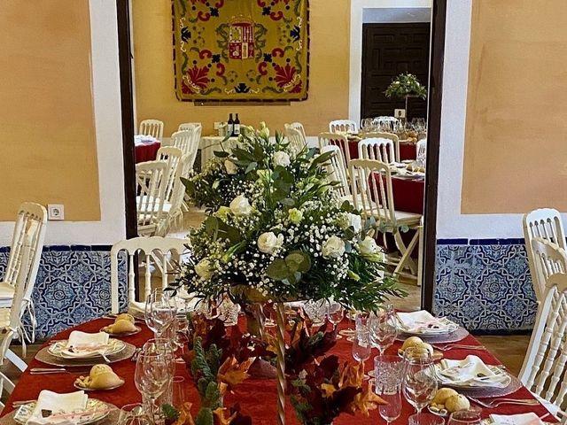 La boda de Miguel  y Cristina  en Sevilla, Sevilla 4