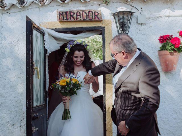 La boda de Carlos y Agri en Pulgarin Alto Y Bajo, Málaga 20