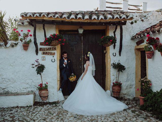 La boda de Carlos y Agri en Pulgarin Alto Y Bajo, Málaga 46