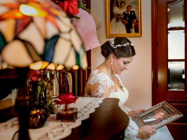 La boda de Julio y Cristina en Solana De Los Barros, Badajoz 9