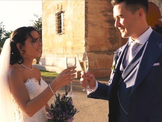 La boda de Víctor y Jessica en Fuentes De Andalucia, Sevilla 15