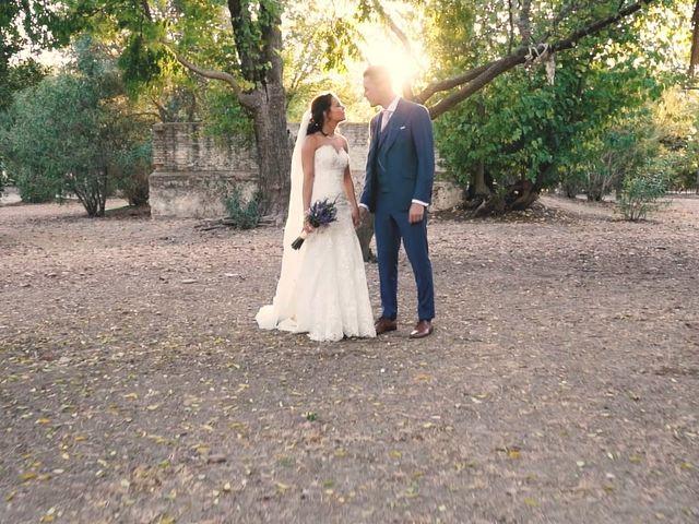 La boda de Víctor y Jessica en Fuentes De Andalucia, Sevilla 16