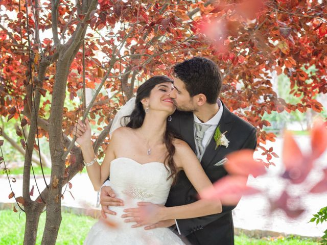 La boda de Alberto y Clara en Elx/elche, Alicante 12
