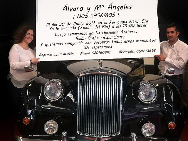 La boda de Álvaro  y Mariángeles  en La Puebla Del Rio, Sevilla 2