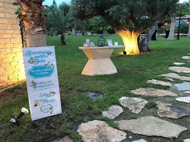 La boda de Antonio y Noelia en Alacant/alicante, Alicante 5