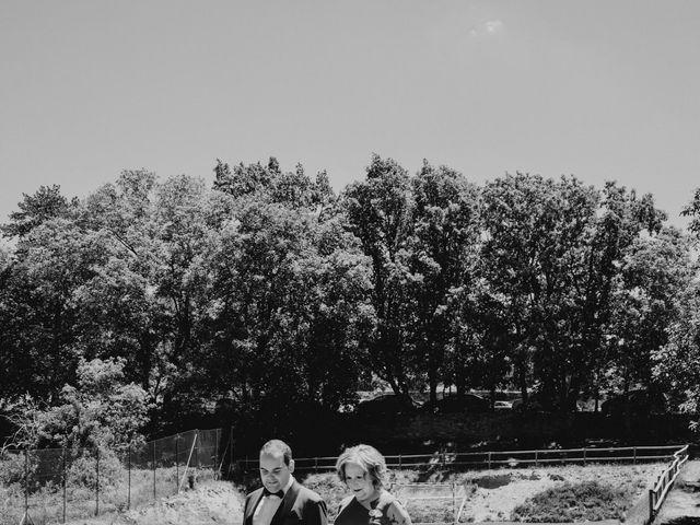 La boda de David y Carla en Navacepedilla De Corneja, Ávila 19