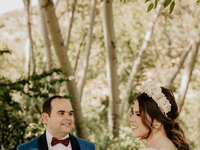 La boda de David y Carla en Navacepedilla De Corneja, Ávila 36
