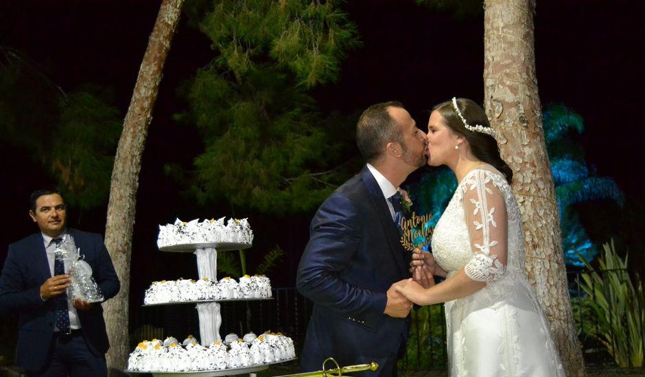 La boda de Antonio y Noelia en Alacant/alicante, Alicante