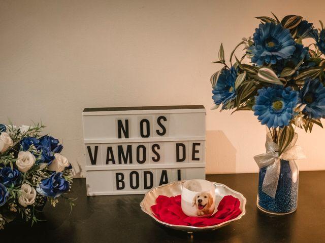 La boda de Laura y Alejandro en Elx/elche, Alicante 4