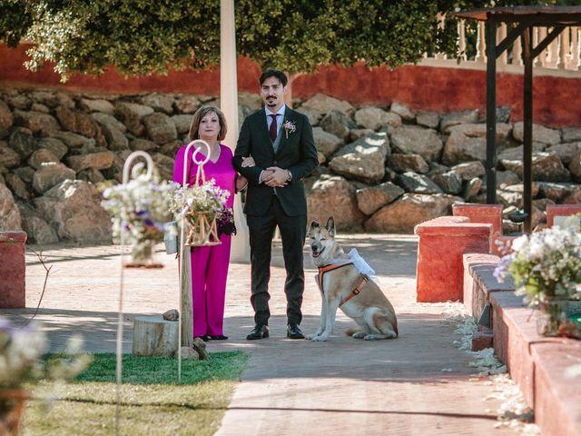 La boda de Laura y Alejandro en Elx/elche, Alicante 83