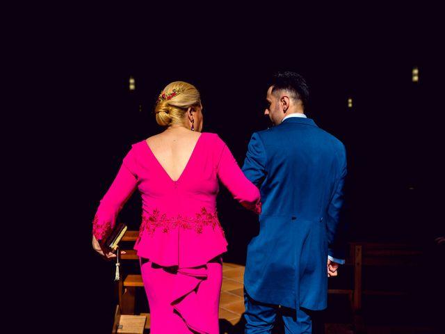 La boda de Carlos y Almudena en Toledo, Toledo 29