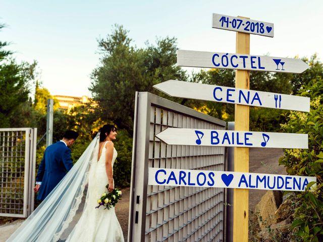 La boda de Carlos y Almudena en Toledo, Toledo 46