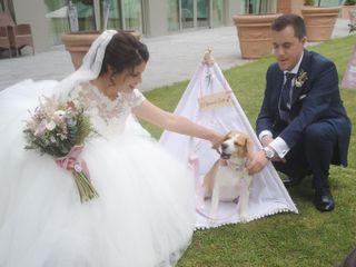 La boda de Melani y Dario