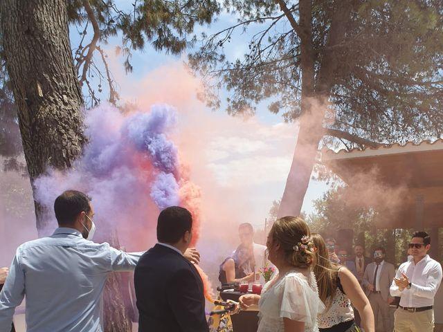 La boda de Sergio y Sole en Ubeda, Alicante 5