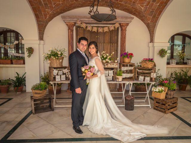 La boda de Jose Andrés y Almudena en Oliva De La Frontera, Badajoz 38