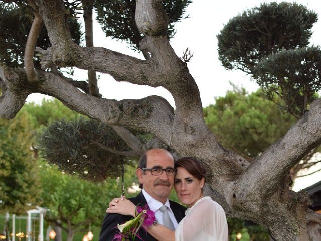 La boda de Ivan y Beatriz en Castejon, Navarra 7
