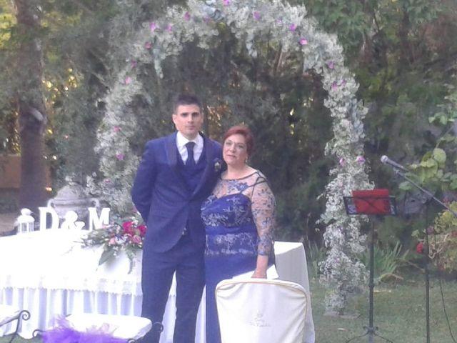 La boda de David y Maria en Santiponce, Sevilla 9