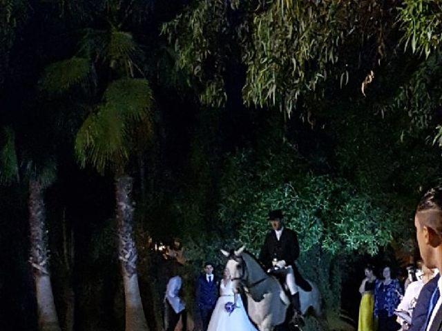 La boda de David y Maria en Santiponce, Sevilla 18