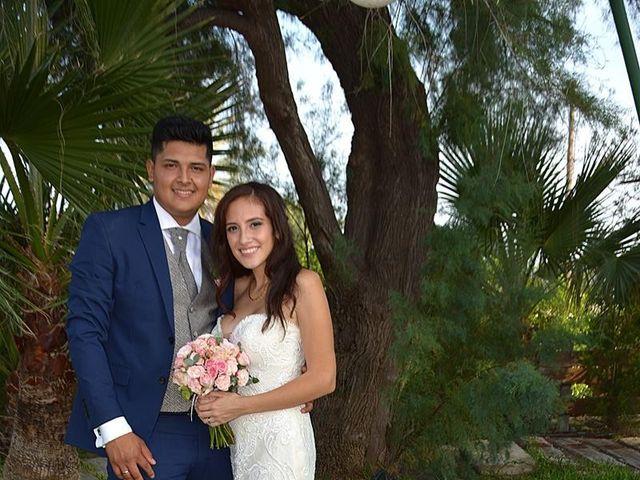 La boda de Sergio y Nathaly en La/villajoyosa Vila Joiosa, Alicante 12