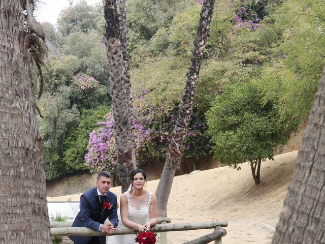 La boda de Apolonia y Diego en Alcala De Guadaira, Sevilla 14