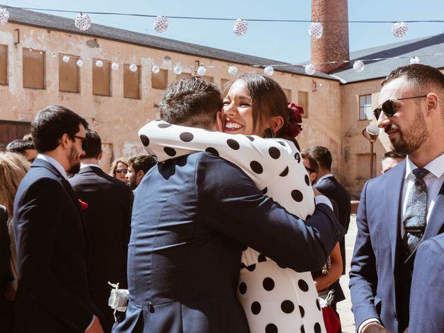 La boda de Alejandro y Carlos en Otero De Herreros, Segovia 38
