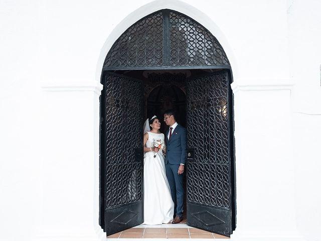 La boda de Jame y Karolina en Ojen, Málaga 31