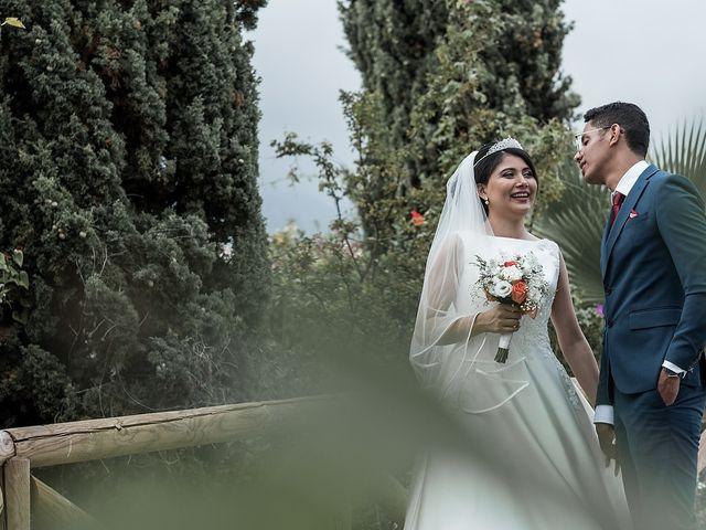 La boda de Jame y Karolina en Ojen, Málaga 35