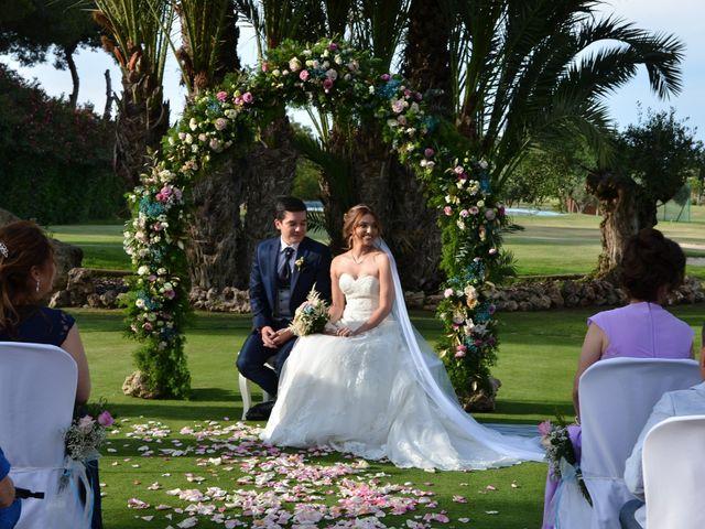 La boda de Leo y Tere en Alacant/alicante, Alicante 17