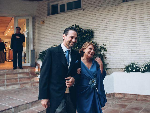 La boda de Pedro y Andrea en Málaga, Málaga 45