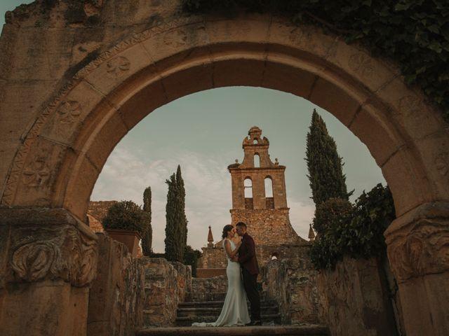 La boda de Antonio y Patricia en Ayllon, Segovia 43