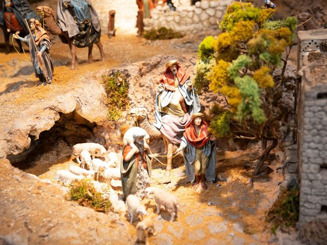 La boda de Miguel y Gabriela en Valladolid, Valladolid 19