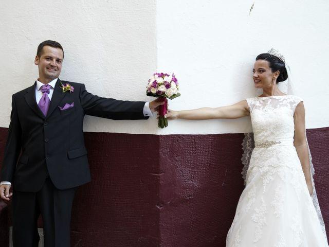 La boda de Javier y Rocío en Alhaurin El Grande, Málaga 12