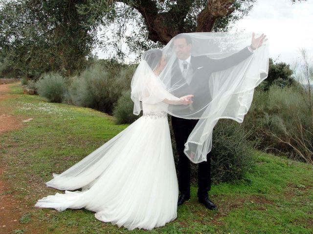 La boda de Jose Luís y Ana Belén en Mérida, Badajoz 28