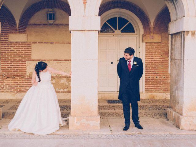 La boda de David y Sonia en Aranjuez, Madrid 20