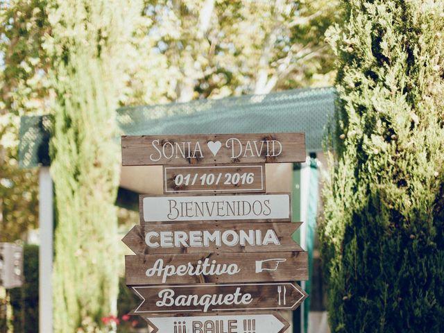 La boda de David y Sonia en Aranjuez, Madrid 8
